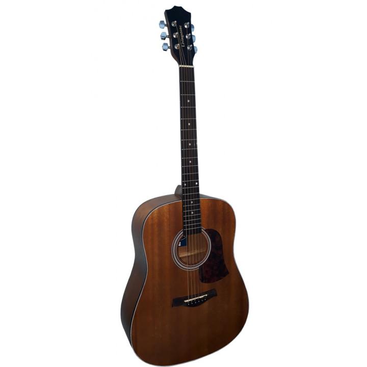 Livingstone W-9NS Акустическая гитара