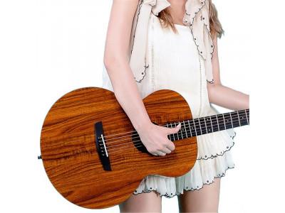 Как выбрать акустическую гитару?