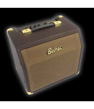 BELCAT Acoustiс 15С Комбоусилитель для эл.акустической гитары