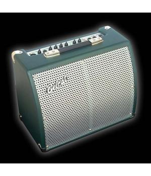 BELCAT KA-25С Комбоусилитель для эл.акустической гитары